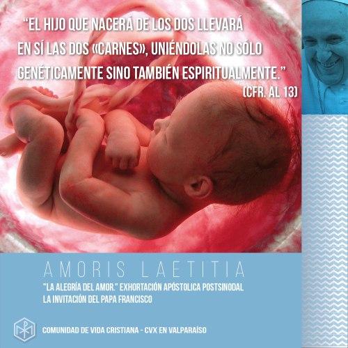 CVX-Amoris-Laetitia-3.jpg